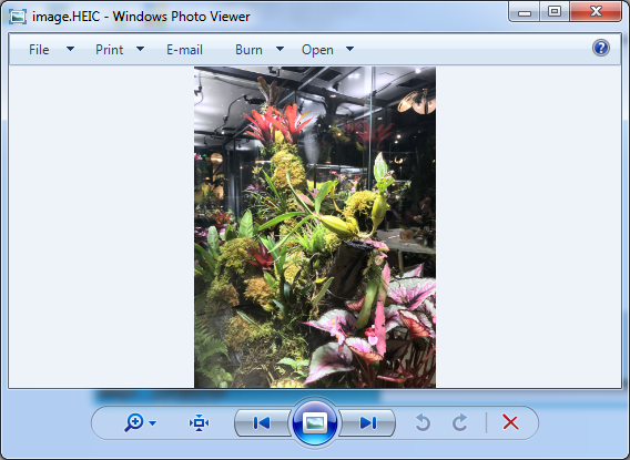 Download Dropbox - Windows 10 version. Free Latest Dropbox