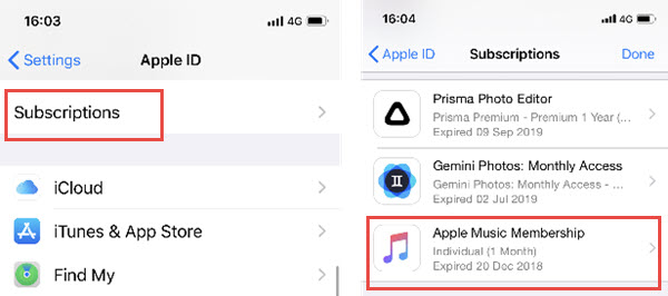 Manage subscription iphone