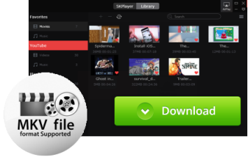 Best Free MKV Player Windows 10/8/7 to Play MKV Files Easily