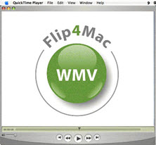Top 3 Ways to Play WMV on Mac (Catalina/Mojave/Sierra Included)