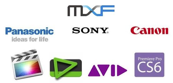 Top MXF Player - Free Play MXF Files on Mac/PC
