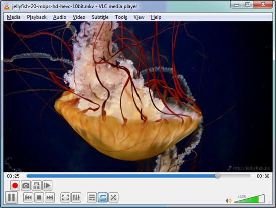 VLC HEVC: How to Play HEVC/H 265 4K Videos with HEVC Player VLC?