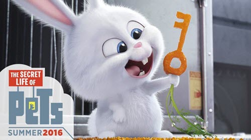 Free Download The Secret Life Of Pets Hd 1080p Mp4 Full Movie